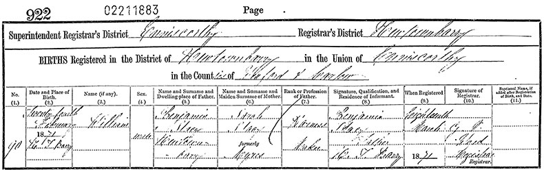Birth Certificate of William Stacey - 24 February 1871